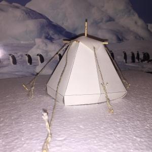 weiße Kothe in der Arktis